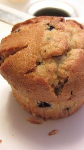 Blueberry_Muffin