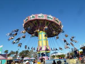 carousel-ted-strutz