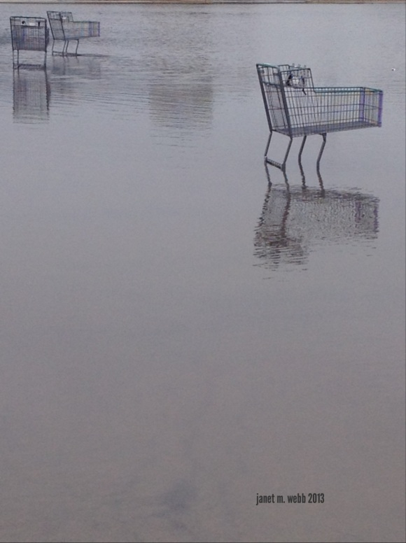 shopping cart in a parking lot lake